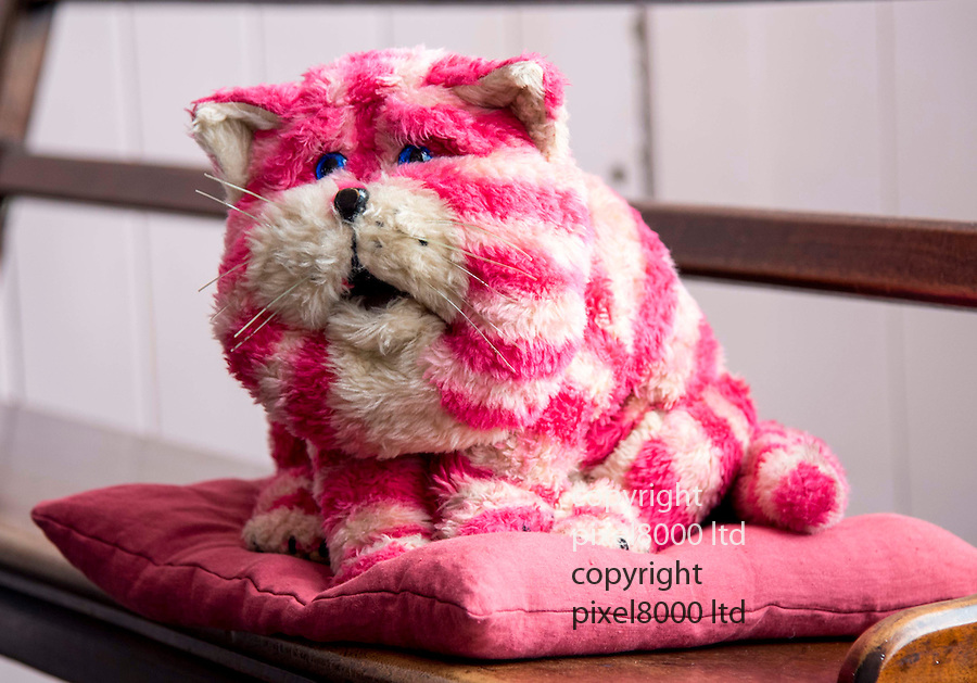Pic shows:  Museum staff holds Bagpuss<br /> <br /> <br /> Bagpuss and Clangers <br /> New exhibition at V&A Museum of Childhood, London<br /> <br /> Created by Oliver Postgate at Peter Firmin of Smallfilms<br /> <br /> <br /> <br /> <br /> Pic by Gavin Rodgers/Pixel 8000 Ltd