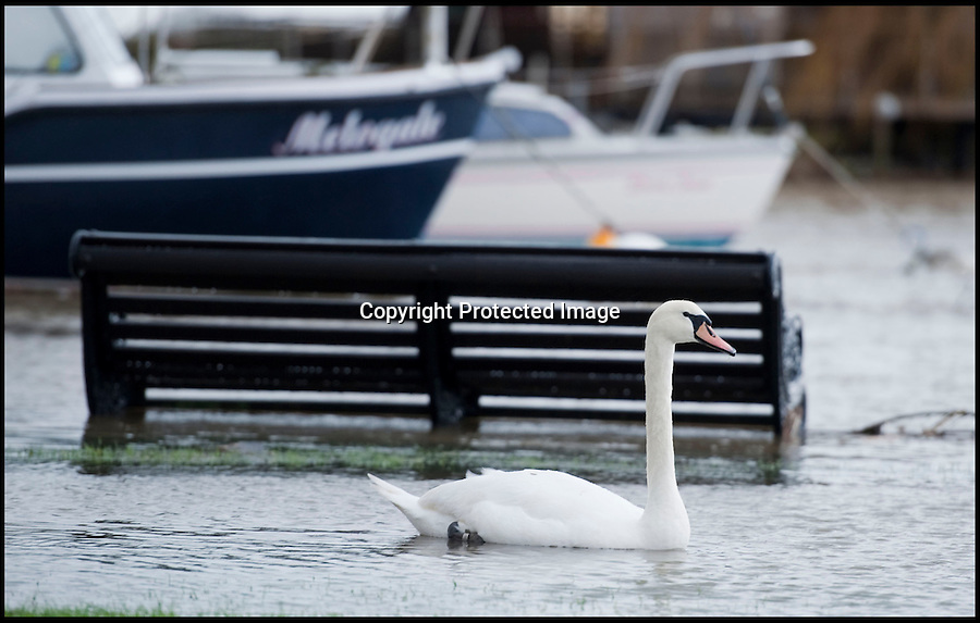 BNPS.co.uk (01202 558833)<br /> Pic: PhilYeomans/BNPS<br /> <br /> Christchurch Quay...<br /> <br /> The River Stour at Christchurch, Dorset, broke its banks last night causing the Iford Bridge Home Park to be evacuated as 3 feet of flood water swept through.