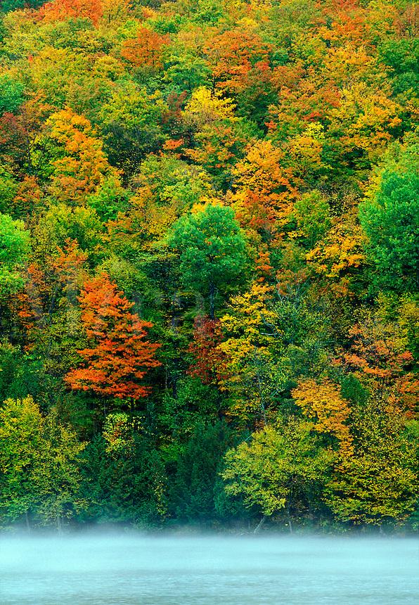 Autumn foliage and Lake Eligo, Vermon