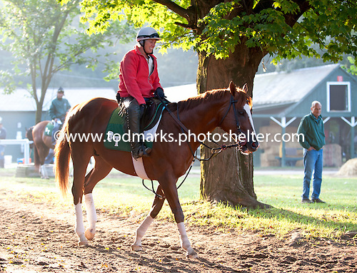 Robin Smullen aboard Barclay Tagg's stakes horse Jersey Town.