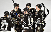 HERSHEY, PA - JANUARY 05: Hershey Bears defenseman Aaron Ness (27), defenseman Tyler Lewington (2), left wing Liam O'Brien (20), center Mike Sgarbossa (17), and right wing Riley Barber (19) celebrate after a goal during the Grand Rapids Griffins vs. Hershey Bears AHL game at the Giant Center in Hershey, PA. (Photo by Randy Litzinger/Icon Sportswire)
