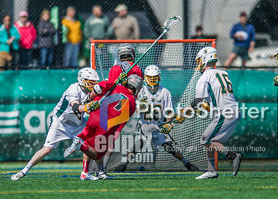 18 April 2015:  University of Vermont Catamount Goaltender Justin Rosenberg, a Junior from Boyds, MD, makes a 4th quarter save against the University of Hartford Hawks at Virtue Field in Burlington, Vermont. The Cats defeated the Hawks 14-11 in the final home game of the 2015 season. Mandatory Credit: Ed Wolfstein Photo *** RAW (NEF) Image File Available ***