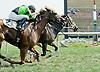 Arrow Lake winning at Delaware Park on 8/31/10