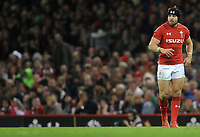 Wales' Leigh Halfpenny during the game <br /> <br /> Photographer Ian Cook/CameraSport<br /> <br /> Under Armour Series Autumn Internationals - Wales v Scotland - Saturday 3rd November 2018 - Principality Stadium - Cardiff<br /> <br /> World Copyright &copy; 2018 CameraSport. All rights reserved. 43 Linden Ave. Countesthorpe. Leicester. England. LE8 5PG - Tel: +44 (0) 116 277 4147 - admin@camerasport.com - www.camerasport.com