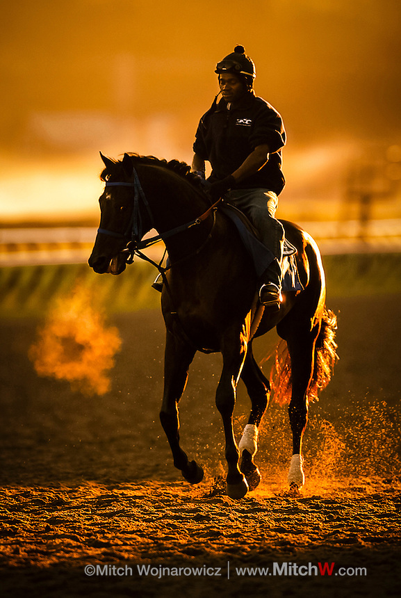 ©Mitch Wojnarowicz Photographer.Saratoga Springs NY A horse's breath is visible in the cool morning air as an exercise rider takes a horse for a morning workout at sunrise at the thoroughbred horse racing track here..20030823.Not a royalty free image. COPYRIGHT PROTECTED.www.mitchw.com.www.mitchwblog.com.518 843 0414_Mitchw@nycap.rr.com.ANY USE REQUIRES A WRITTEN LICENSE.NO Model release for this image