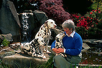 Middle-aged woman with her three dalmatians; one sits in her lap affectionately.