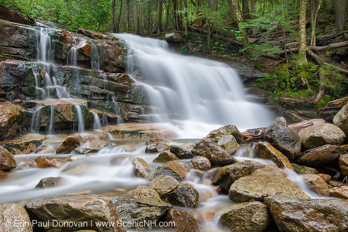 Stairs Falls on Dry Brook in Franconia Notch of Lincoln, New Hampshire during the spring months. The Falling Waters Trail passes by this waterfall.