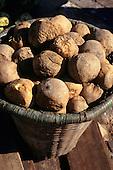 Belem, Brazil. Rustic basket of jenipapu (Genipa americana) fruit.