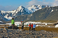 Tourists hike along the shores among stranded icebergs from the Columbia Glacier, Columbia bay, northern Prince William Sound, Chugach mountains in the distance.