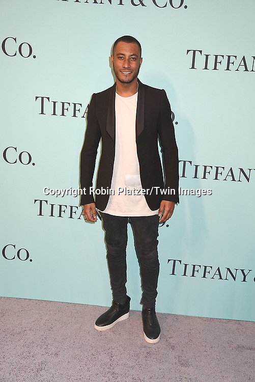 Sunnery James attends the Tiffany &amp; Co 2017 Blue Book Collection on April 21, 2017 at St Ann's Warehouse in Brooklyn, New York, USA.<br /> <br /> photo by Robin Platzer/Twin Images<br />  <br /> phone number 212-935-0770