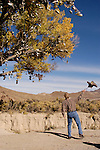 A passerby tosses his pair of boots into the Eastgate ShoeTree along US 50 in central Nevada.