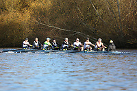 Crew: 38   Op MasD 8+   Reading Rowing Club   RDG-WRIGHT<br /> <br /> Wallingford Head 2017<br /> <br /> To purchase this photo, or to see pricing information for Prints and Downloads, click the blue 'Add to Cart' button at the top-right of the page.
