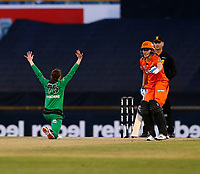 2nd November 2019; Western Australia Cricket Association Ground, Perth, Western Australia, Australia; Womens Big Bash League Cricket, Perth Scorchers versus Melbourne Stars; Kristen Beams of the Melbourne Stars appeals for a wicket - Editorial Use