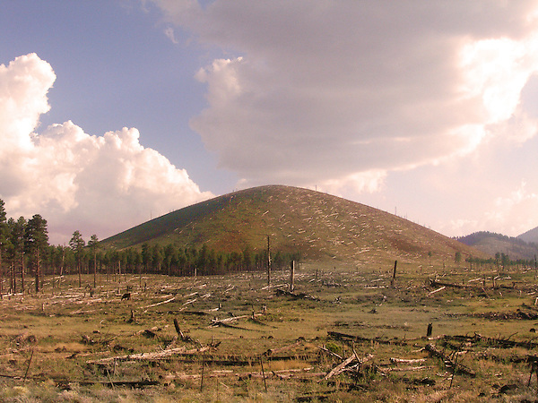 A area in Arizona that has been clear-cut
