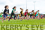 Action from 80m sprint at the Kerry Community games finals in Castleisland on  Saturday