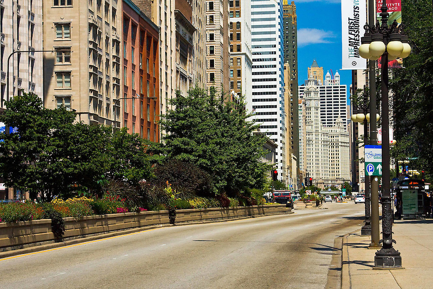 Various images of Chicago