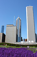 A view of the Chicago skyline from gardens within Millennium Park