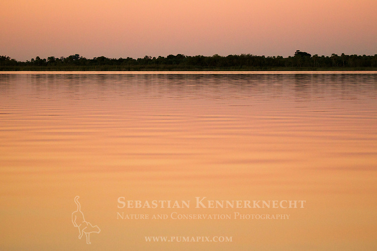 Marsh at sunset, Ibera Provincial Reserve, Ibera Wetlands, Argentina