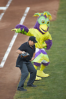 BirdZerk entertains the fans between innings of the Midwest League game between the Bowling Green Hot Rods and the Dayton Dragons at Fifth Third Field on June 9, 2018 in Dayton, Ohio. The Hot Rods defeated the Dragons 1-0.  (Brian Westerholt/Four Seam Images)