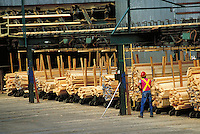 Lumber sorting at sawmill in northern Okanagan.