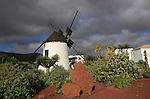 Windmill and garden at Centro de Artesania Molinos de Antigua, Fuerteventura, Canary Islands, Spain