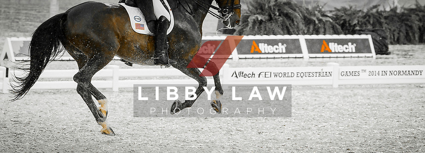 USA-Adrienne Lyle (WIZARD) INTERIM-7TH: GRAND PRIX: Team Competition (Qualifier for the Grand Prix Special) The Alltech FEI World Equestrian Games 2014 In Normandy - France (Monday 25 August) CREDIT: Libby Law COPYRIGHT: LIBBY LAW PHOTOGRAPHY - NZL