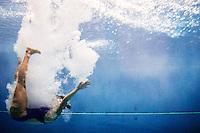 Paola Flaminio (ITA)   Qualificazioni trampolino 3m femminile   Campionati Italiani assoluti di tuffi indoor    Torino 04/04/2014    Piscina Stadio Monumentale  Nuoto Tuffi    Foto Giorgio Perottino / Insidefoto