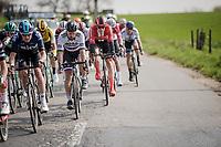 Peter SAGAN (SVN/BORA-Hansgrohe)<br /> <br /> 81st Gent-Wevelgem 'in Flanders Fields' 2019<br /> One day race (1.UWT) from Deinze to Wevelgem (BEL/251km)<br /> <br /> ©kramon
