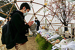 A man prays during the fifth anniversary of the Great East Japan Earthquake and Tsunami disaster at the Peace on Earth memorial ceremony in Hibiya Park on March 11, 2016, Tokyo, Japan. Almost 19,000 people lost their lives as a result of the magnitude 9.0 earthquake and subsequent tsunami that hit Japan's north east coast 5 years ago. Five years after the event some 174,000 survivors are still in temporary accommodation. This includes nearly 100,000 from Fukushima who have not been able to return home as a result of the effects of the tsunami and nuclear catastrophe that ensued. (Photo by Rodrigo Reyes Marin/AFLO)