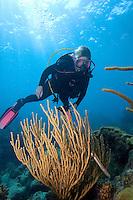 Scuba diver, Florida Keys National Marine Sanctuary