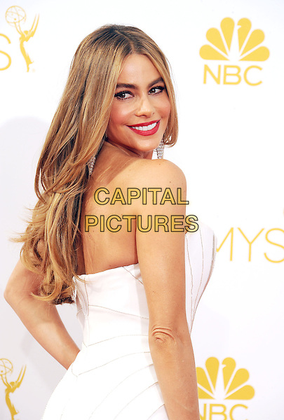 LOS ANGELES, CA- AUGUST 25: Actress Sofia Vergara arrives at the 66th Annual Primetime Emmy Awards at Nokia Theatre L.A. Live on August 25, 2014 in Los Angeles, California.<br /> CAP/ROT/TM<br /> &copy;Tony Michaels/Roth Stock/Capital Pictures