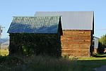 Rustic wooden buildings