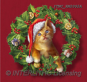 Marcello, CHRISTMAS ANIMALS, WEIHNACHTEN TIERE, NAVIDAD ANIMALES, paintings+++++,ITMCXM2002A,#XA# ,Christmas wreath ,cat