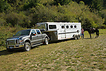Ford pickup, horse trailer and horse in Crescent City California