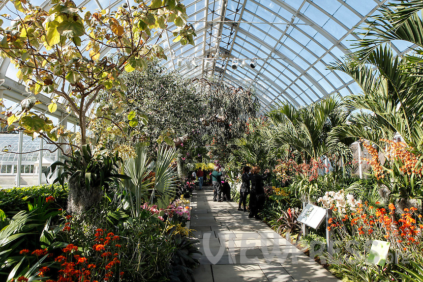 Features The Orchid Show At The Botanical Garden In Bronx New