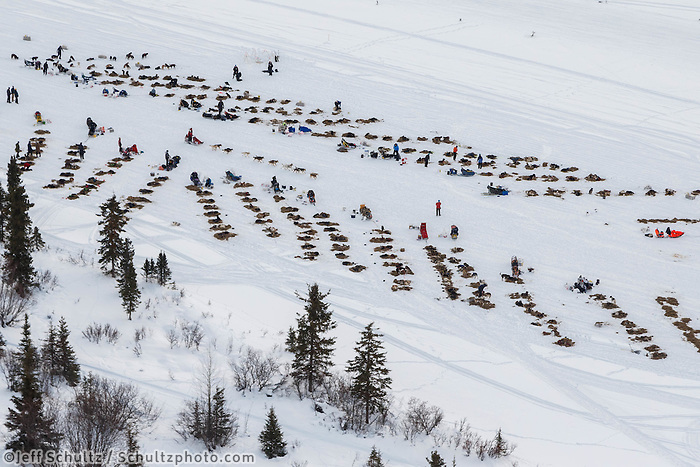 Teams rest at the Rainy Pass checkpoint as Aliy Zirkle mushes past during Iditarod 2016.  Alaska.  March 07, 2016.  <br /> <br /> Photo by Jeff Schultz (C) 2016 ALL RIGHTS RESERVED