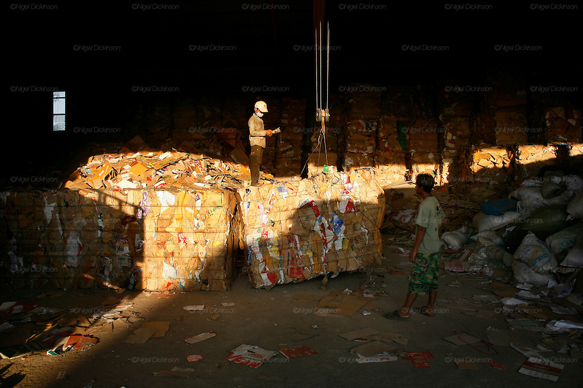 A young teenager operates heavy lifting gear to move bales of cardboard in a large recycling warehouse, which operates big distribution for cardboard and paper, on the edge of Phnom Penh. The small warehouses and street side recyclers bring their cardboard and paper here in small lorries. The cardboard is packed tightly into large bundles and then exported to Thailand and Vietnam. There is one factory which recycles cardboard in Cambodia.