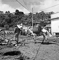 Die Feira de Agua de Meninos in Salvador, Brasilien 1960er. The Feira de Agua de Meninos in Salvador, Brazil 1960s.