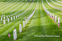 65095-02615 Gravestones at Jefferson Barracks National Cemetery St. Louis, MO