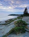 Acadia National Park<br /> Morning light on the Otter Cliffs near Newport Cove