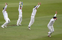 Essex slips appeal for a wicket during Nottinghamshire CCC vs Essex CCC, Specsavers County Championship Division 1 Cricket at Trent Bridge on 10th September 2018