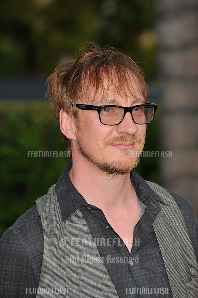 David Thewlis at the Los Angeles premiere of The Soloist at Paramount Theatre, Hollywood..April 20, 2009  Los Angeles, CA.Picture: Paul Smith / Featureflash