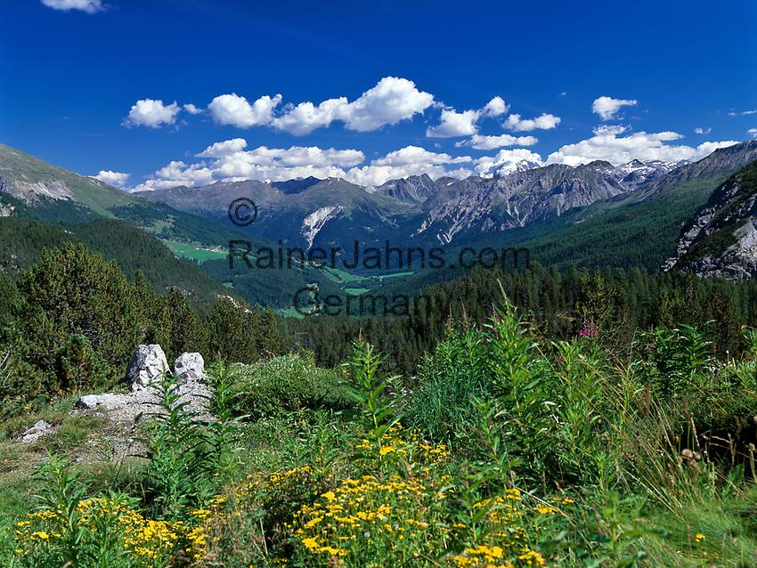 Schweiz, Graubuenden, Blick vom Ofenpass (2.149 m) ins Muenstertal | Switzerland, Graubuenden, view from Fuorn Pass (2.149 m) at Val Muestair