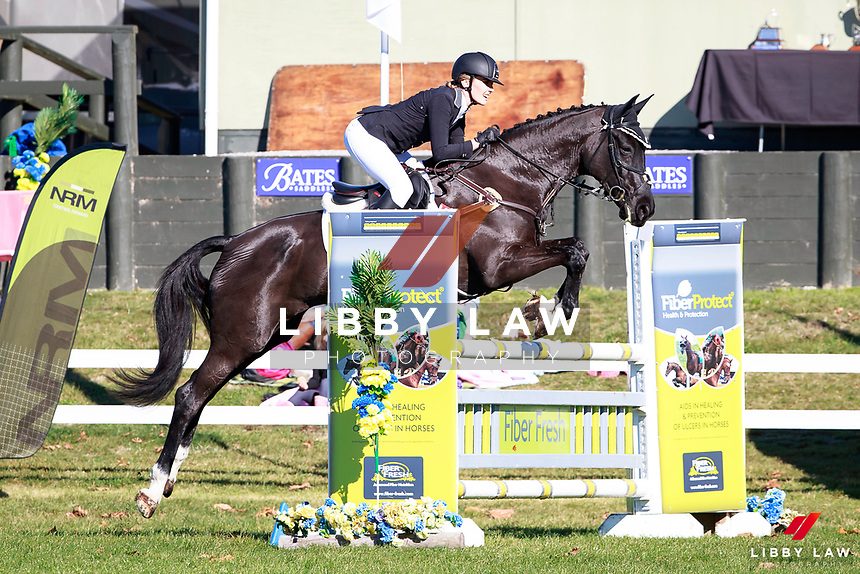 Alex Anderson rides Gina VT Bloemenhof during the Fiber Fresh CCI1* Championsip Showjumping at the 2017 NZL-NRM National Three Day Event Championships. National Equestrian Center, Taupo. Sunday 14 May. Copyright Photo: Libby Law Photography