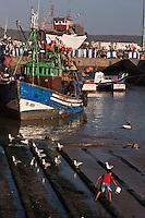 Afrique/Afrique du Nord/Maroc/Essaouira: Le Port, ses chalutiers  et son chantier naval ou sont construits les bateaux de pêche en bois de teck et d' eucalyptus