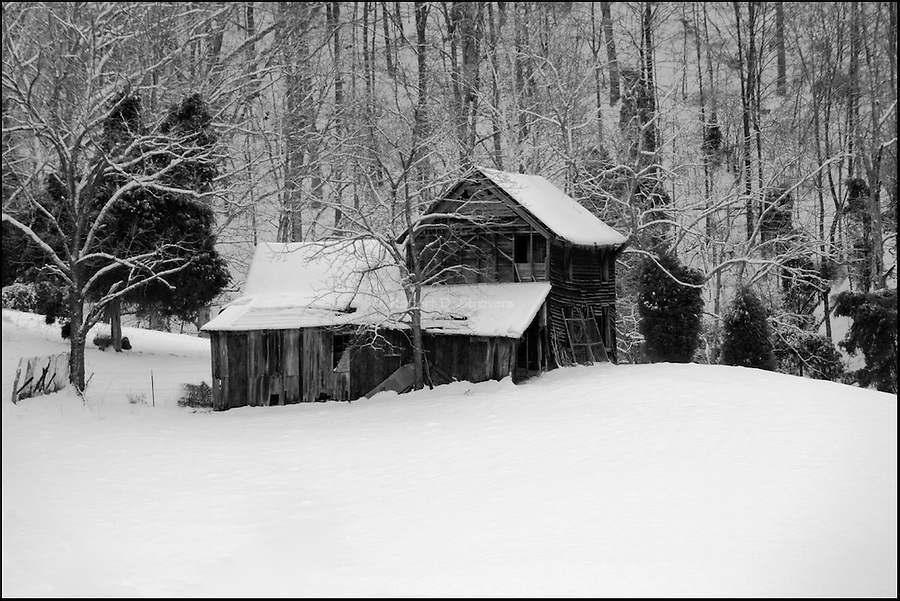 Winter scenes and perspectives in monochrome and black and white. Nature and rural winter scenes,