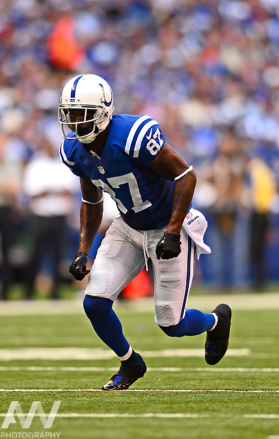 Sep 28, 2014; Indianapolis, IN, USA; Indianapolis Colts wide receiver Reggie Wayne (87) against the Tennessee Titans at Lucas Oil Stadium. Mandatory Credit: Andrew Weber-USA TODAY Sports