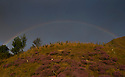 20/08/14 <br /> <br /> A rainbow at first light over Mam Tor follows a cold night in the Derbyshire Peak District.<br /> <br /> All Rights Reserved: F Stop Press Ltd. +44(0)1335 300098   www.fstoppress.com.