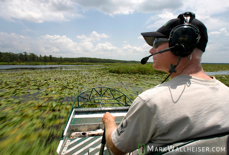 "Guided by radio from a helicopter, Wayne ""Hoho"" Brooks, with Brooks Brothers Alligator Farm in Christmas, Florida runs his airboat to a alligator nest on Lake Miccosukee to collect alligator eggs from their nests July 19, 2007.  Fourteen men from both the Florida Wildlife Commission and private commercial gator farms collected 562 eggs from Lake Miccosukee.  (Mark Wallheiser/TallahasseeStock.com)"