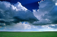 Cumulus clouds floating over the High Plains, shortgrass prairie, near Cheyenne Wells, Colorado, AGPix_0085 .